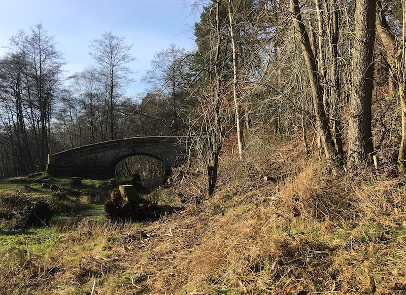 Bridge 70 offside vegetation - February 2019